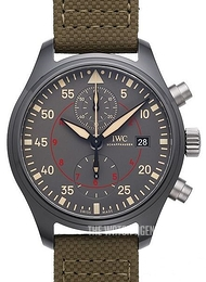 IWC Pilots Classic Grey/Leather Ø44 mm IW389002
